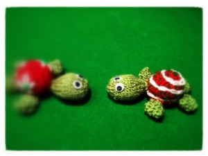 The turtles meet face-to-face (Copyright Corrie B)