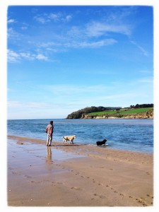 Daddykins and the dogs on the beach (Copyright Corrie B)