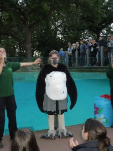 Dressed as a penguin at London Zoo.