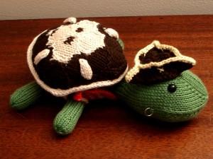 Pirate Sheldon