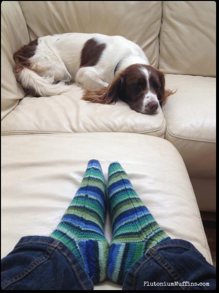 Boyfriend socks with Alfie in the background.