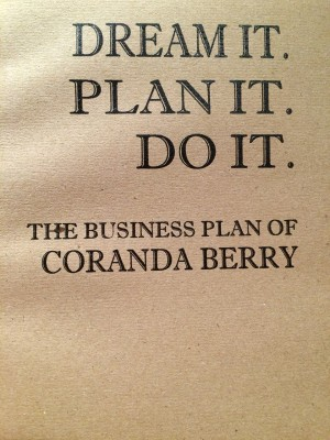 My new business plan notebook!