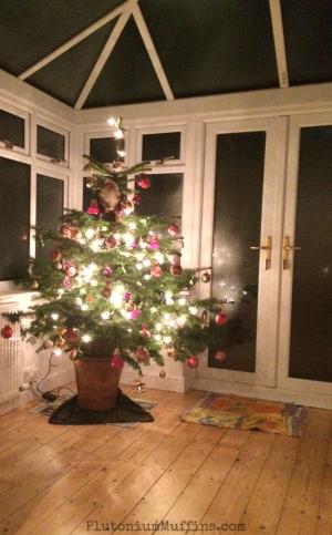 The Christmas Tree, lit up, decorated and ready to go.
