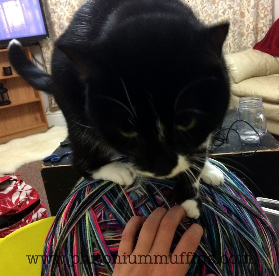 Tonks loves yarn.
