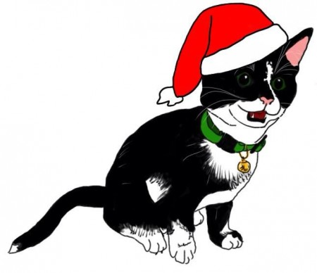 Meowy Christmas from Plutonium Muffins HQ!