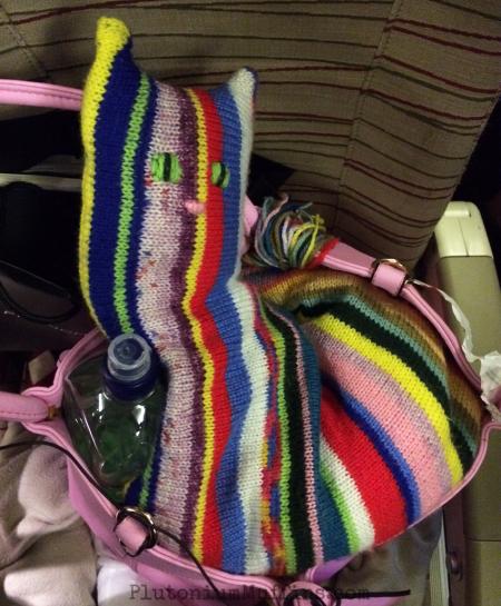 Kittylow on the plane.