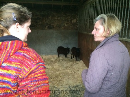 Me and mum talking about the two little babies in the stable.