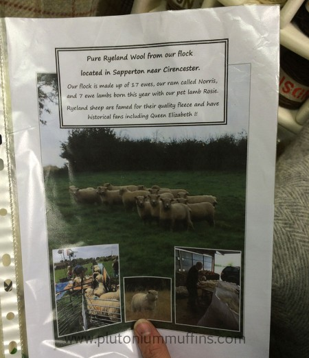 Information about the flock of Ryeland Sheep that is kept in the nearby Forest of Dean.